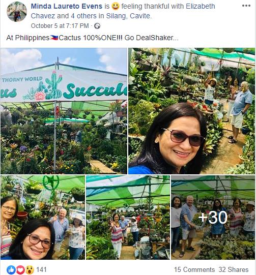 Cactus 100%ONE