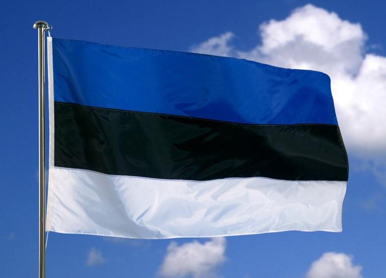 Регулирование криптоиндустрии в Эстонии будет усилено